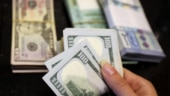 US dollar on course for worst month in decade as pandemic cripples economy
