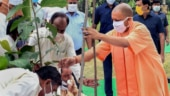 Big events can be held with coronavirus protocol: Yogi Adityanath at mega plantation drive