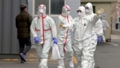 'Trapped' illegal workers in Saudi look to coronavirus for escape