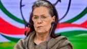 Sonia Gandhi to remain interim Congress chief after day of high drama