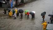 Heavy to very heavy rainfall likely in parts of Maharashtra: IMD