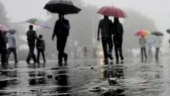 Very heavy rain likely in 8 MP districts; IMD issues orange alert