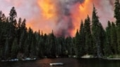 63 rescued after California wildfire traps campers in national forest