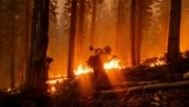 Lightning storm, easterly wind: How the California wildfires got so bad