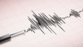4.6 magnitude earthquake hits Mizoram's Champhai, no casualties