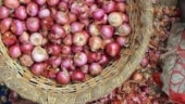 Farmers in trouble after Centre bans export of onions