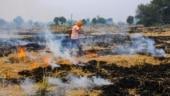 Nasa images show early stubble burning in Punjab