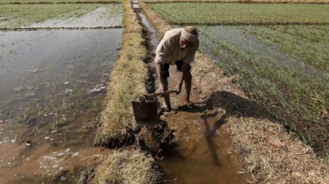Trust issue: Why Indian farmers are opposing 'historic' farm bills  - India Today RSS Feed  IMAGES, GIF, ANIMATED GIF, WALLPAPER, STICKER FOR WHATSAPP & FACEBOOK