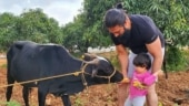 KGF star Yash and daughter Ayra play with cows during their family getaway. See pic