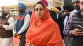 Harsimrat Kaur Badal resigns from Modi govt, says I'm protesting against anti-farmer bills