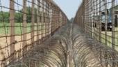 Army nabs Pakistani intruder at Indo-Pak border in Punjab's Ferozepur
