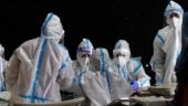 Managing coronavirus by herd immunity is 'a dangerous fallacy', say scientists
