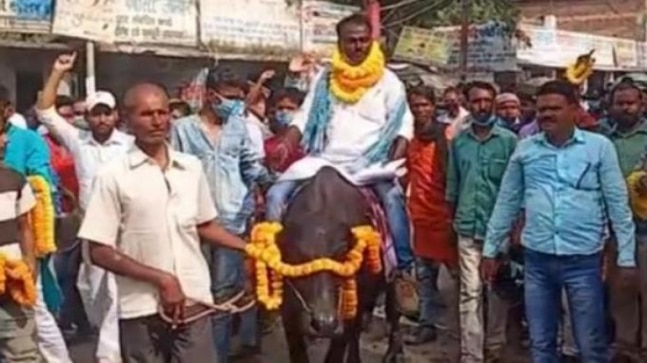 Bihar election independent candidate arrives on buffalo to file nomination | Watch  - India Today RSS Feed  IMAGES, GIF, ANIMATED GIF, WALLPAPER, STICKER FOR WHATSAPP & FACEBOOK