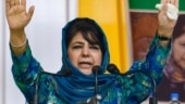 Mehbooba Mufti's release: Article 370, Gupkar Declaration and alliance with Abdullahs in focus