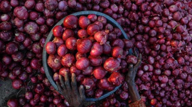 Onion prices rise as rain damages kharif crop; Centre eases import norms  - India Today RSS Feed  IMAGES, GIF, ANIMATED GIF, WALLPAPER, STICKER FOR WHATSAPP & FACEBOOK