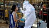 India reached coronavirus peak in late September, crisis likely to end by February end: Govt-appointed panel