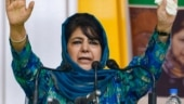 Mehbooba Mufti released, vows to fight for restoration of special status, Article 370 in J&K