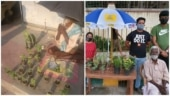 Old man selling plants in Bengaluru goes viral. Twitter does a #BabaKaDhaba