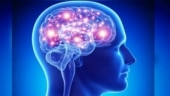 Brain can be made to teleport using lasers, finds study: Here's how
