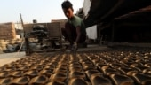 Cheap, attractive Chinese lights hit clay potters' business this Diwali