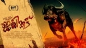 Malayalam film Jallikattu is India's official entry to Oscars 2021