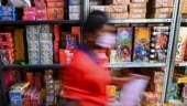 After HC order, Telangana govt imposes ban on sale, use of firecrackers
