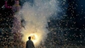 Avoid firecrackers on Diwali, Kali Puja, West Bengal government makes public appeal