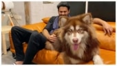 Prabhas and Charmme Kaur's doggo in the same pic wins Instagram. Trending now