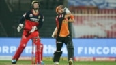 IPL 2020, Eliminator: Confident SRH eye 4th successive win as RCB looks to shrug off 4 back-to-back losses
