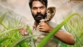 Simbu captures Cobra snake in Eeswaran, Chennai animal activist files complaint