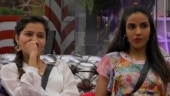 Rubina and Jasmin turn sisters in new Bigg Boss 14 promo, fight for ancestral property