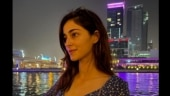 Ananya Panday poses against Dubai skyline. Beautiful, says Internet
