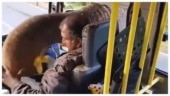 Elephant puts trunk inside truck for banana treat. Viral video divides Internet