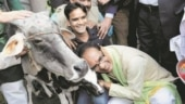 Shivraj Singh Chouhan announces 'gau cabinet' in Madhya Pradesh; first meeting to be on November 22