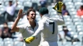 Fans appalled after Australia dismiss India for record low score of 36 in Adelaide Test: 2020 showed us everything
