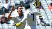 India vs Australia: Full credit to bowlers for Adelaide win while batting needs improvement, says Tim Paine