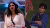 Arshi Khan and Vikas get into a major fight during captaincy task. New Bigg Boss 14 promo