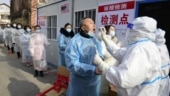 WHO, China could have acted faster on coronavirus pandemic, says experts