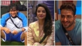 Vikas Gupta and Jasmin Bhasin get into a Twitter spat over Aly Goni's homophobic comments
