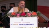 BJP will protect language, culture of Assam, says Amit Shah at Kokrajhar rally