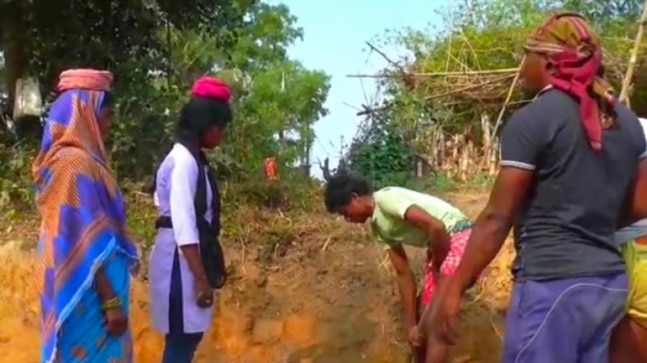 Dalit Engineering student in Odisha works as MGNREGA worker to fund her pending college dues  India Today RSS Feed INDIAN GUM ARABIC – बाबुल, बबुरा, कीकर PHOTO GALLERY  | HINDIMEANING.COM  #EDUCRATSWEB 2020-04-19 hindimeaning.com https://www.hindimeaning.com/wp-content/uploads/2016/12/Indian-Gum-Arabic.jpg