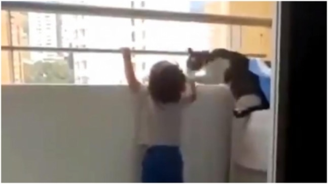 This viral video of a toddler and his pet cat shows not all heroes wear capes. Watch