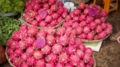 Dragon Fruit renamed as Kamalam in Gujarat. Memes and jokes online are pure gold