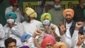Punjab Municipal election results: Congress dominates; BJP, SAD fail to attract voters
