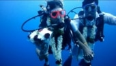 Tamil Nadu couple dives underwater to tie the knot. Full story here