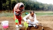 What's behind Shivraj Chouhan's latest environment pitch?