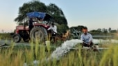 Ponds of many piracles: How MP's Dewas district achieved water self-sufficiency