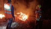 Similipal forest fire brought under control after 2 weeks