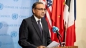 UNSC needs to introspect about cost of its 'actions, inactions' on Syria: India