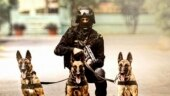 In a graphic: India's new K9s
